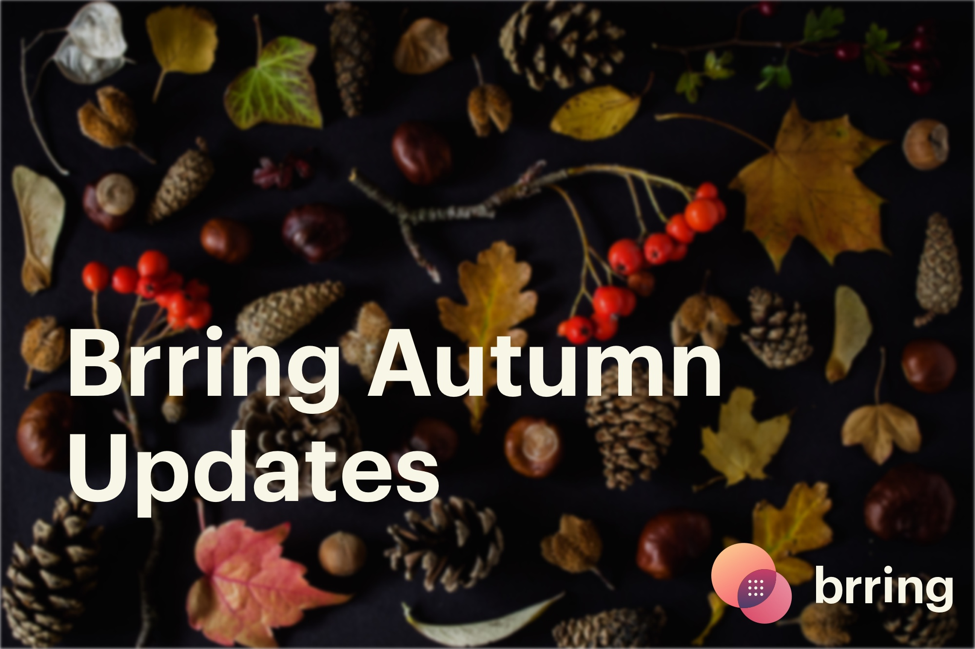 Brring Autumn Updates